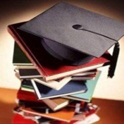 Образование — Бизнес